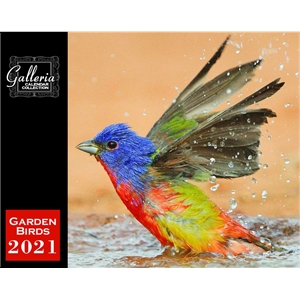 BirdsWall Calendar
