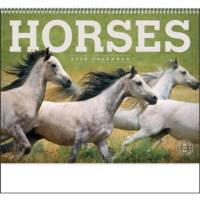 2020 Calendars with horses