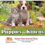 Puppies and Kittens calendar 2020